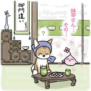 あたち柴犬 抹茶だヨ!  - 伊賀忍者柴犬の道 --120127_4お菓子の妖精