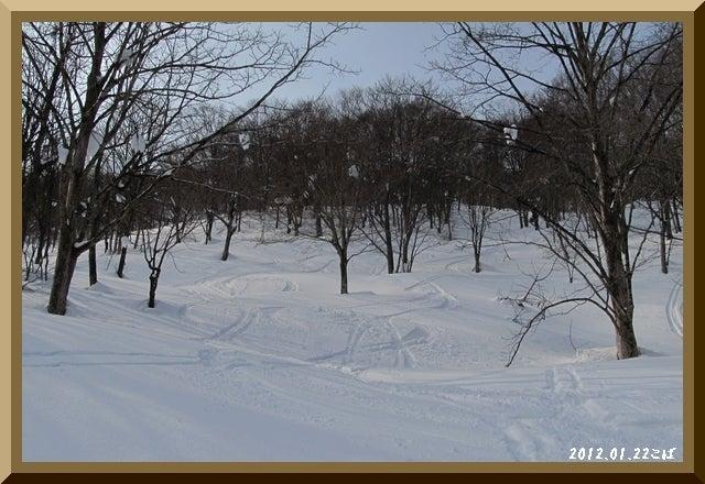 ロフトで綴る山と山スキー-0122_1210