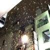 ■雪・ゆき・SNOW!の画像