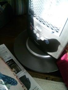 オカメインコのももちゃんと花教室と旅日記-120125_083011.jpg