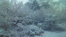 みわくのみわくん 園山農園ブログ-201201240713000.jpg