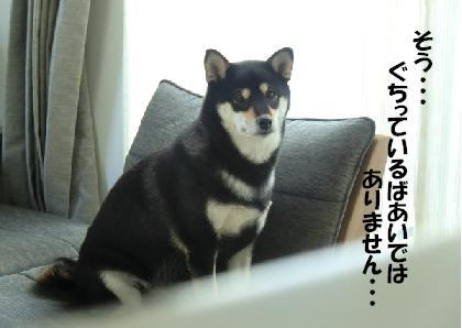 てんcoてんjp