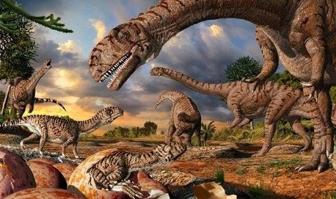 ジュラ紀の恐竜マッソスポンディルスの巣や卵を発見―南アフリカ ...