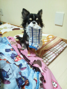 azuki-1029さんのブログ-120127_192824.jpg