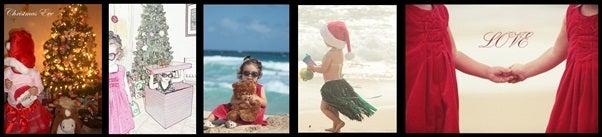 $Hawaii から・・・プリチのブログお届けします。