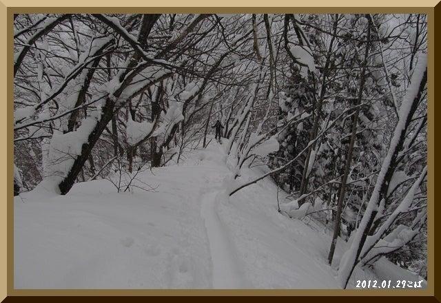 ロフトで綴る山と山スキー-0129_0815