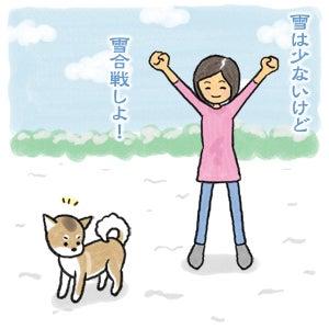 あたち柴犬 抹茶だヨ!  - 伊賀忍者柴犬の道 --120201_3雪食い合戦
