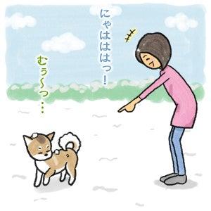 あたち柴犬 抹茶だヨ!  - 伊賀忍者柴犬の道 --120201_5雪食い合戦
