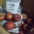 りんご最終便