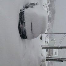 今日は大雪・・・