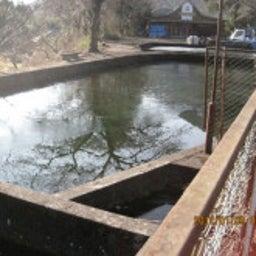 戯言-ため池