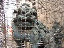 番猫と番犬の舌先三寸-120203新宿、花園神社1