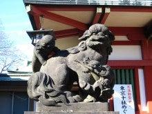 番猫と番犬の舌先三寸-120130品川神社2