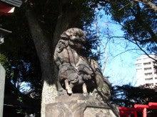 番猫と番犬の舌先三寸-120130品川神社1