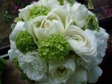 $flower-in-style