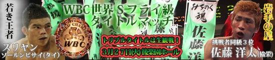 BOXING MASTER/ボクシング マスター-ミニグローブ
