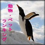 さんぽにっき-AirRanking