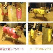 犬用レインコート、山…
