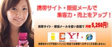 福岡で頑張る社長のブログ!-新ココなび.comイメージ