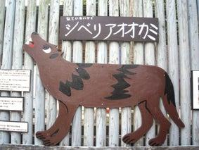 ALL OK!でしょ-オオカミ絵