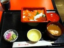 Usamixのブログ-さけトロ丼