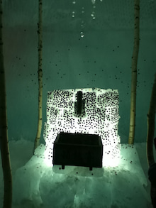 Usamixのブログ-氷濤まつり2