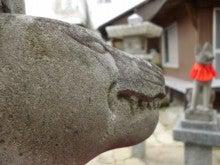 猫丸。の狛犬探訪録