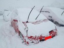 $SNOWBOARDどうでしょう?