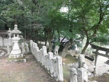 ご近所の神社訪問記-虫井3