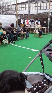 nonosioさんのブログ-120212_1328~01.jpg