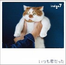$indigo7 KENTオフィシャルブログ Powered by Ameba
