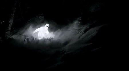 闇夜に幻想的に光る雪を降らせる...
