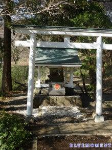 ヒーラー&クレアボヤント(透視能力者)~ BLUEMOMENT(中台 励)のブログ-白龍神社(九頭龍の森内)