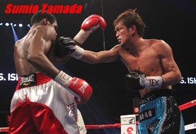石田vsウィリアムズ WBCインター...