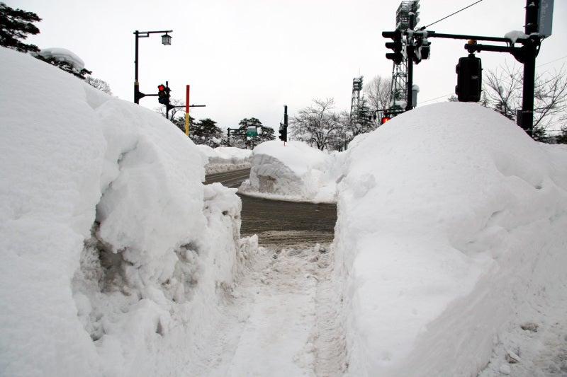 雪の「高田城」と「榊神社」 (...