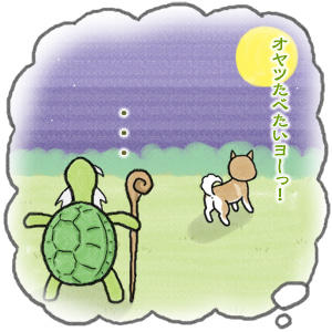 あたち柴犬 抹茶だヨ!  - 伊賀忍者柴犬の道 --120226_2柴犬抹茶、ストルバイトが消える!