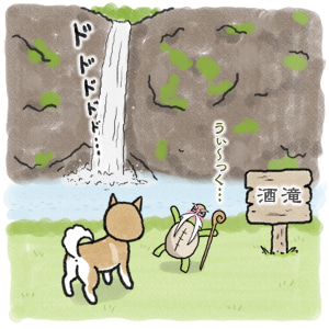 あたち柴犬 抹茶だヨ!  - 伊賀忍者柴犬の道 --120226_9柴犬抹茶、ストルバイトが消える!