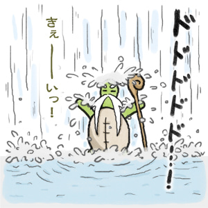 あたち柴犬 抹茶だヨ!  - 伊賀忍者柴犬の道 --120226_4柴犬抹茶、ストルバイトが消える!