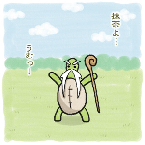 あたち柴犬 抹茶だヨ!  - 伊賀忍者柴犬の道 --120226_3柴犬抹茶、ストルバイトが消える!