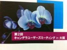 Dr.Koshoのブログ-キャンデラセミナー