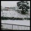 すんげー雪!