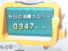120229カロリー