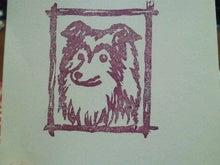 ミニシェルティ・シオンのブログ-2012030119510001.jpg