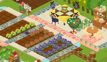 ベランダ菜園とHOTコーシ