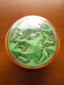 $あくびちゃんがおもちゃのかんづめをgetするまでチョコボールを食べ続けるブログ-120302_0810~01.jpg