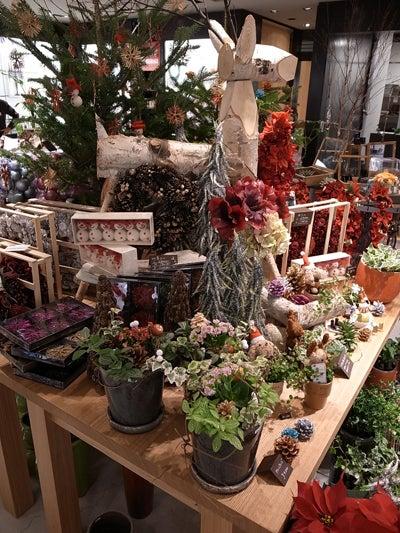 白楽花園 de BLOG