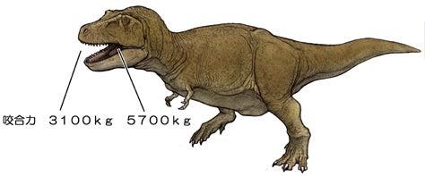 川崎悟司 オフィシャルブログ 古世界の住人 Powered by Ameba-ティラノサウルスの咬合力