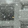 大粒の雪の画像