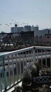 凛と空に咲く-2012030611380000.jpg