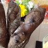 春野菜のサラダ  苺ドレッシング添えの画像